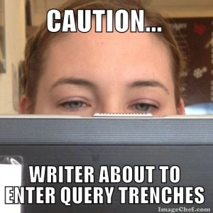 querying writer
